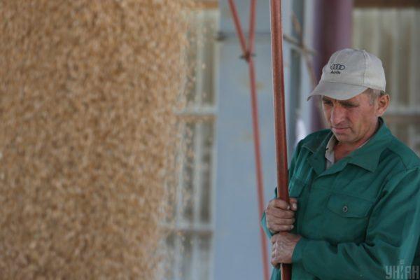 """$1,5 мільярда прибутку від експорту українського зерна """"засіло"""" в офшорах — міжнародне дослідження"""