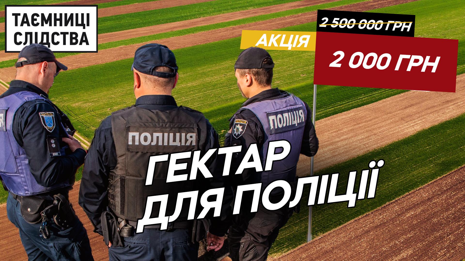Top-20048